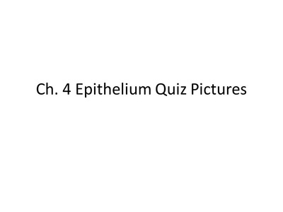 Quiz: Epithelial Tissues - Anatomy and Physiology